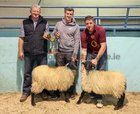 Tommy Joe Gallagher, judge (left) with Dean and Padraig Kerrigan from Glentrague with their champion of show pair of ewe lambs at the annual Maam Cross Connemara Pony Show sheep show.