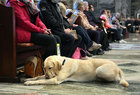 Marian Maloney of Knocknacarra with her new guide dog Leon during the annual Solemn Novena to Our Lady of Perpetual Help at Galway Cathedral.