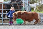 Three and a half years old Aoife Joyce from Cashel was at the Maam Cross Fair on Tuesday.