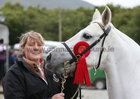 Alaoise Halpin from Claregalway with her pony Kilrock Cashel, winner of the 5-9 year old without fol class at the annual Maam Cross Connemara Pony Show.