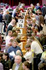 Sorting votes in the local and European elections and referendum at Leisureland