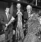 Prize winners at Ballinasloe Show on 5 October 1969 were John Niland, Clonberne, Thomas Quinn, Ballinasloe, and John Lynn, Ballinasloe.