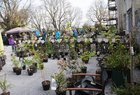 <br /> A view of the  Claregalway Castle Spring,  Food and Craft Fair on Sunday.